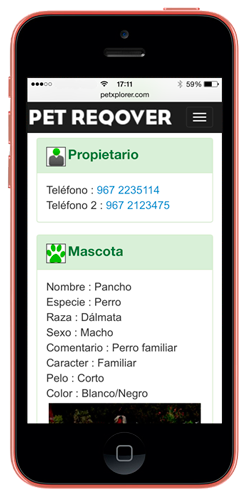 telefono24
